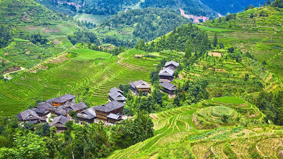 Rice Terraces Tours