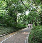 Gulin Botanical Garden of Guilin