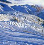 Longji rice terraces in winter