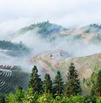 Ping'an terraces afer rain