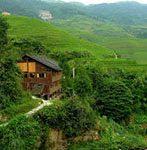 dazhai jingkeng terraces