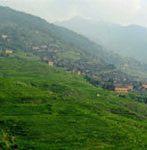 longji zhuang terrace